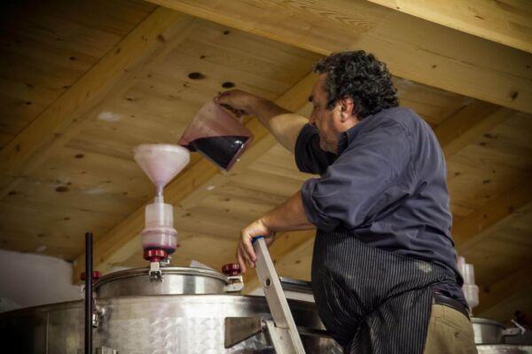 vini-olio-biologico-toscano-gramineta-chi-siamo-3